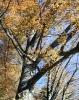 Herbst_27
