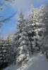 Winterfotos_7