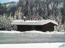 Winterfotos_9